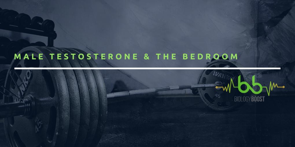 male testosterone